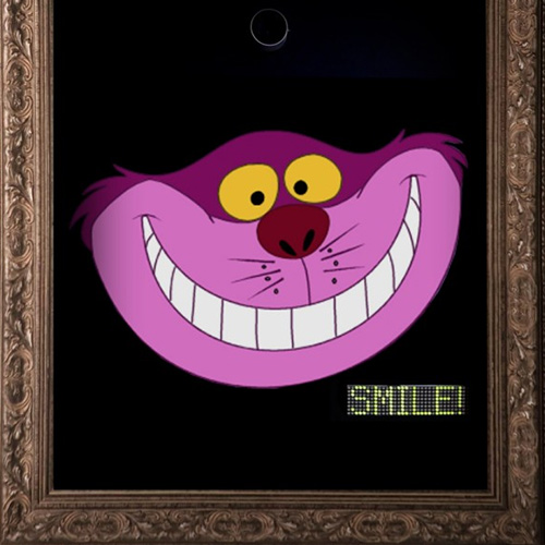 Cheshire cat smile booth